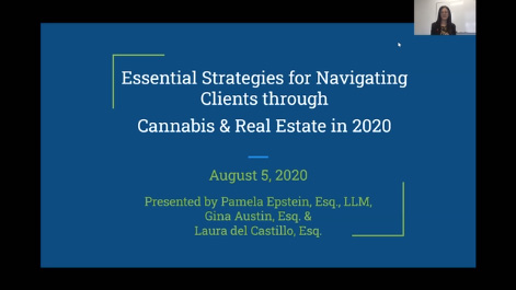 Essential Strategies for Navigating Clients through Cannabis & Real Estate in 2020 Thumbnail