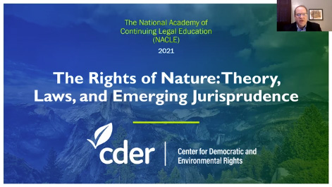 The Rights of Nature: Theory, Laws, and Emerging Jurisprudence Thumbnail