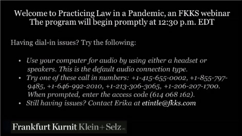 Practicing Law in a Pandemic: Remote Lawyering in the Age of COVID-19 Thumbnail